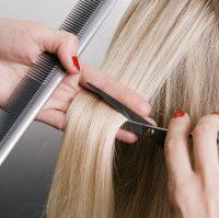 hairdresser cutting blonde hair